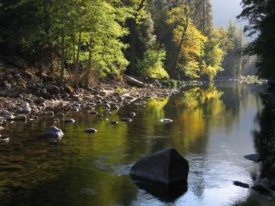 The public weighed in on price increases to Yosemite National Park. (Craig Miller/KQED)