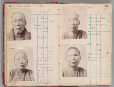 Chinese residents of Sierra County, California, 1894.
