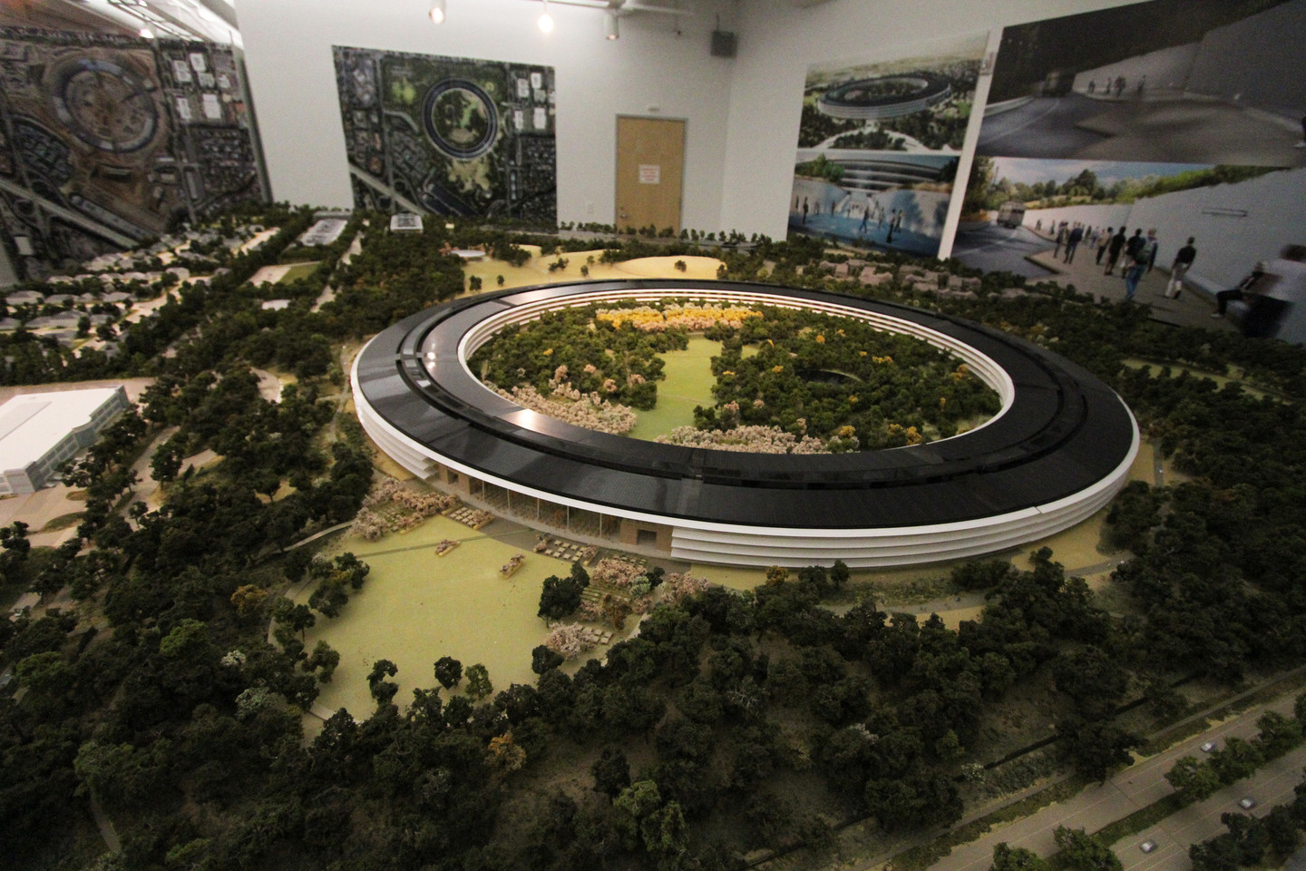 Apple has a room-size model of the new campus in a building on site of the construction zone. (Anya Schultz/KQED)