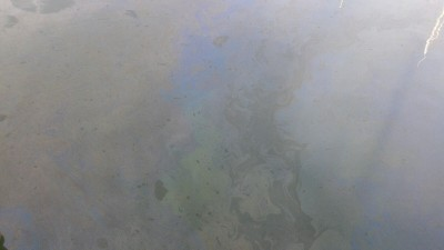 An oil slick on the water in the Oakland Estuary on Feb. 11.