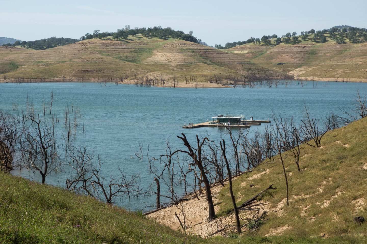 New Melones Lake, the state's fourth-largest reservoir, pictured in April 2015.  Dan Brekke/KQED