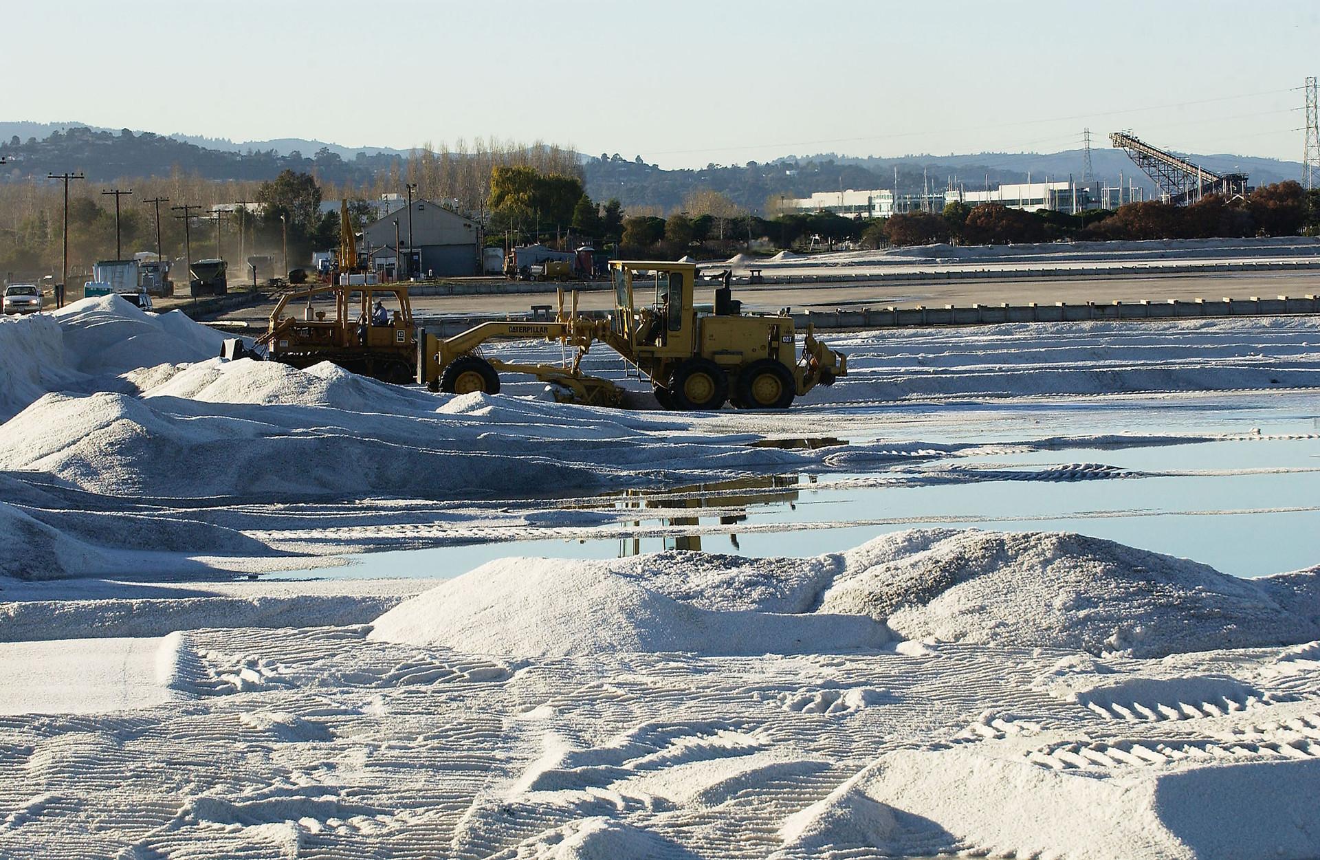 EPA Steps Into Redwood City's Salt Pond Development Battle