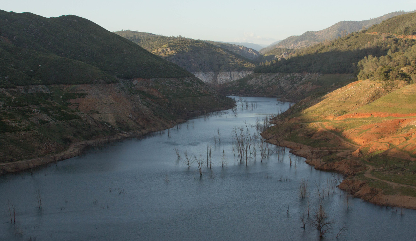 The Stanislaus River canyon, an arm of New Melones Lake. The reservoir is 22 percent of normal and could be completely drained by fall.  Dan Brekke/KQED