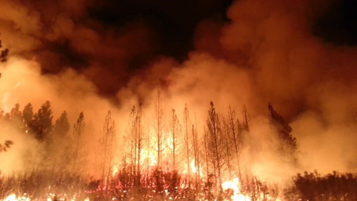 Rim-Fire-Photo-US-Forest-Service-720x405