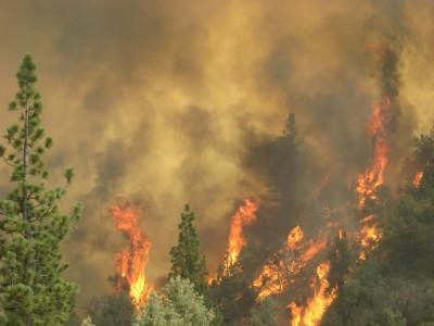 The Washington Fire burns Monday near the Alpine County town of Markleeville.