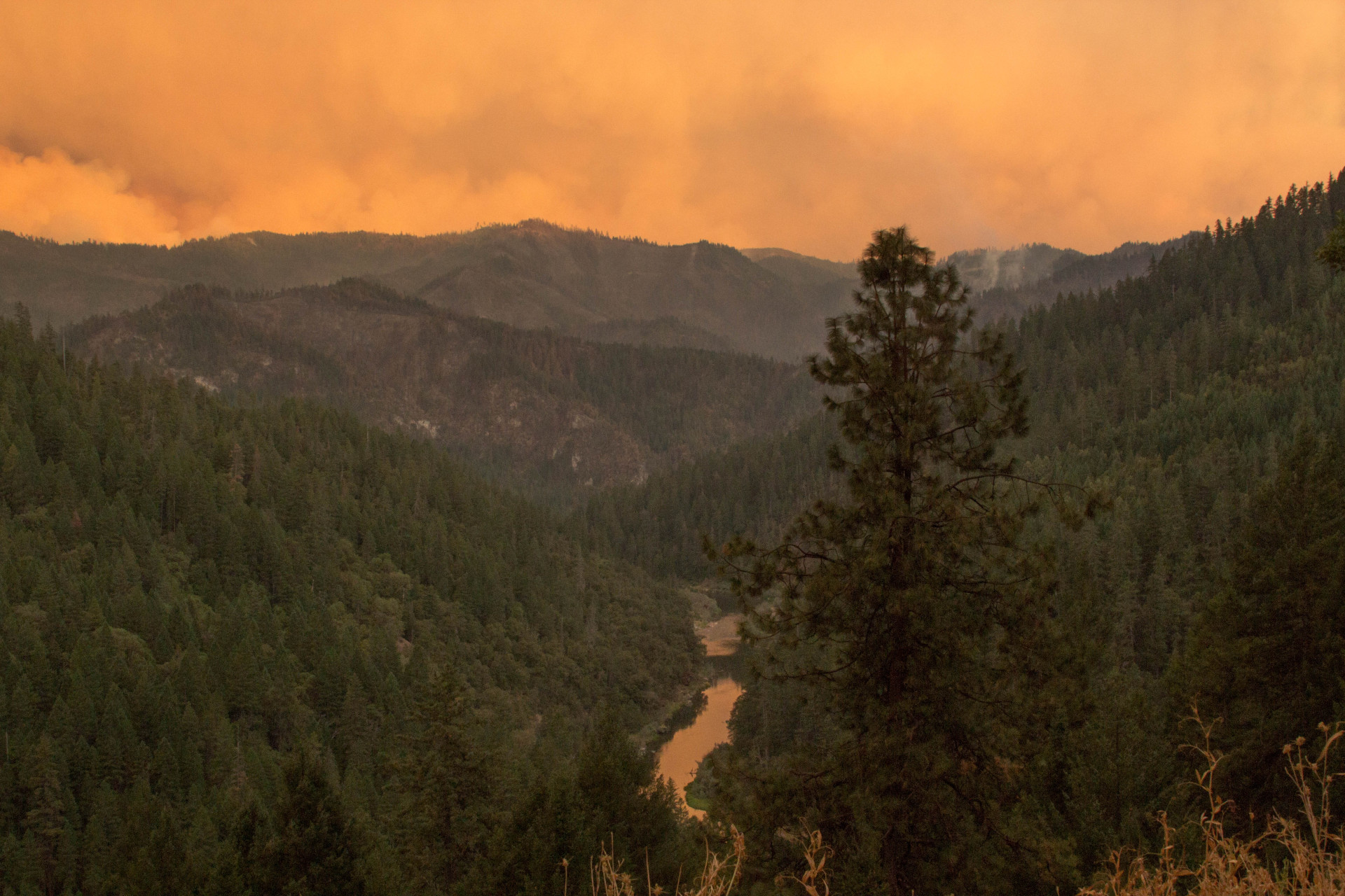 """The Frying Pan Fire, burning in the mountains south of the Klamath River in Siskiyou County, as seen from Highway 96 east of the town of Happy Camp in late August 2014. The fire was one of a series sparked by lightning that federal fire managers have dubbed the Happy Camp Complex. The U.S. Forest Service announced Tuesday that a handful of """"holdover"""" hotspots had reignited due to extreme heat and drought conditions."""