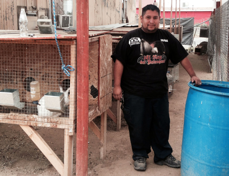 Isaac Orduño runs a feed store in Sultana and gives his birds and rabbits water from a 55-gallon drum. That way, he doesn't have to keep the hose running.