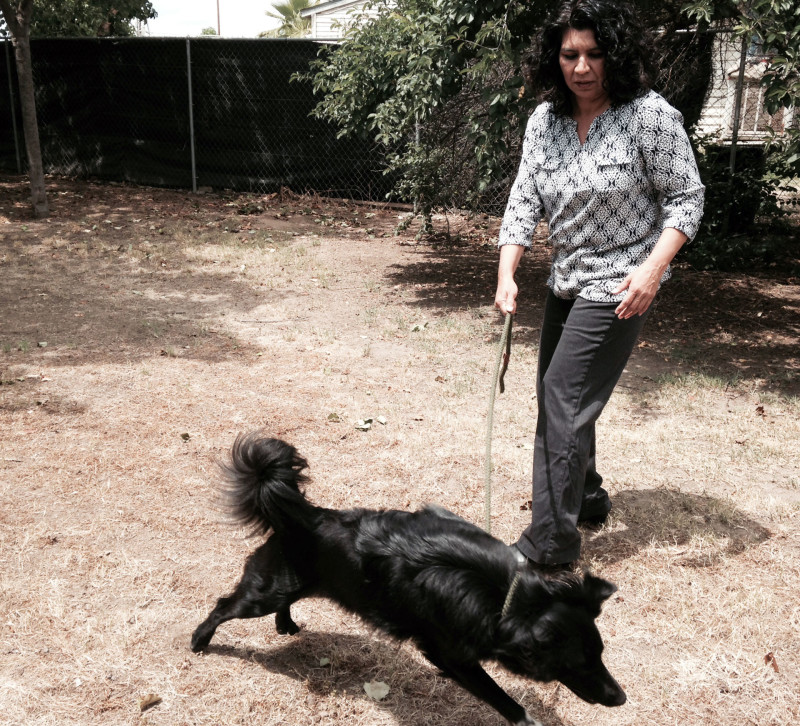 Even though Kari Gonzales Quintana has no meter to dictate her use, she's letting her one-acre lawn go brown to save water.