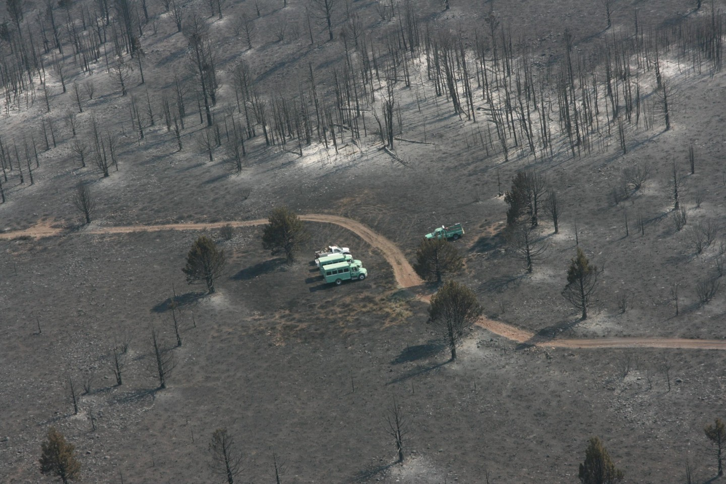 Part of the area burned this week in the 17,000-acre plus Washington Fire in Alpine County. U.S. Forest Service
