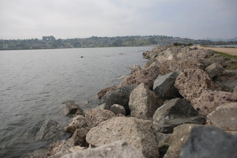 During king tides, which occur when the gravity of the sun and the moon align, 'We can get an idea of what a permanent rise in sea level might look like in our communities,' says the California King Tides Project. In these stills from a time­lapse video, the tide at Heron's Head Park near Hunters Point rose 5.75 feet over 5.5 hours.