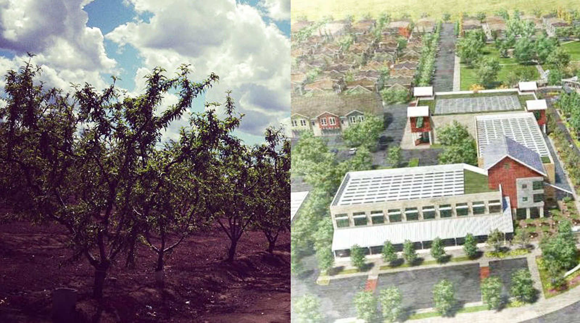The town of Reedley is planning an eco-friendly community that it says could use less water than the orchards that once populated the land.
