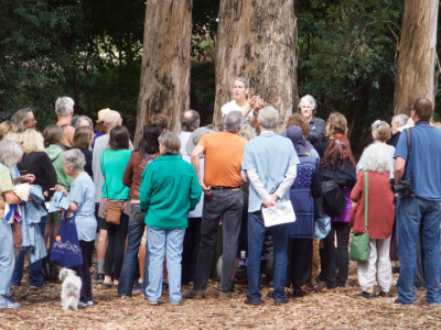 Jack Gescheidt and his Tree Spirit Project team address a group of volunteers at UC Berkeley on Saturday.