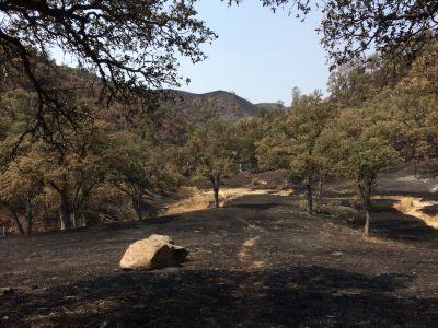 Countryside burned in the Rocky Fire along Highway 20 in Lake County.