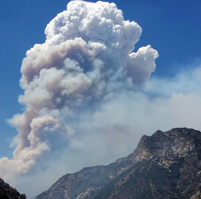 The Rough Fire grew to more than 20,000 acres on Aug. 17..