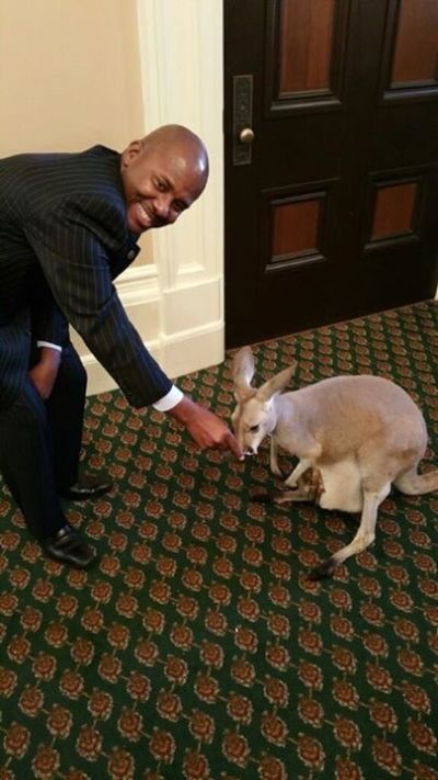 A photo provided to KQED News by lobbyists shows Assemblyman Mike Gipson with a kangaroo at a Sea World event at the state Capitol in May 2015.