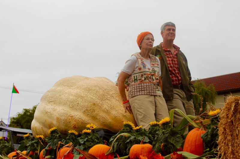 Steve Daletas of Pleasant Hill, OR won the 42nd Annual Safeway World Championship Pumpkin Weigh-Off with his 1,969 pound pumpkin. This is Daletas' third time winning the weigh off in Half Moon Bay.