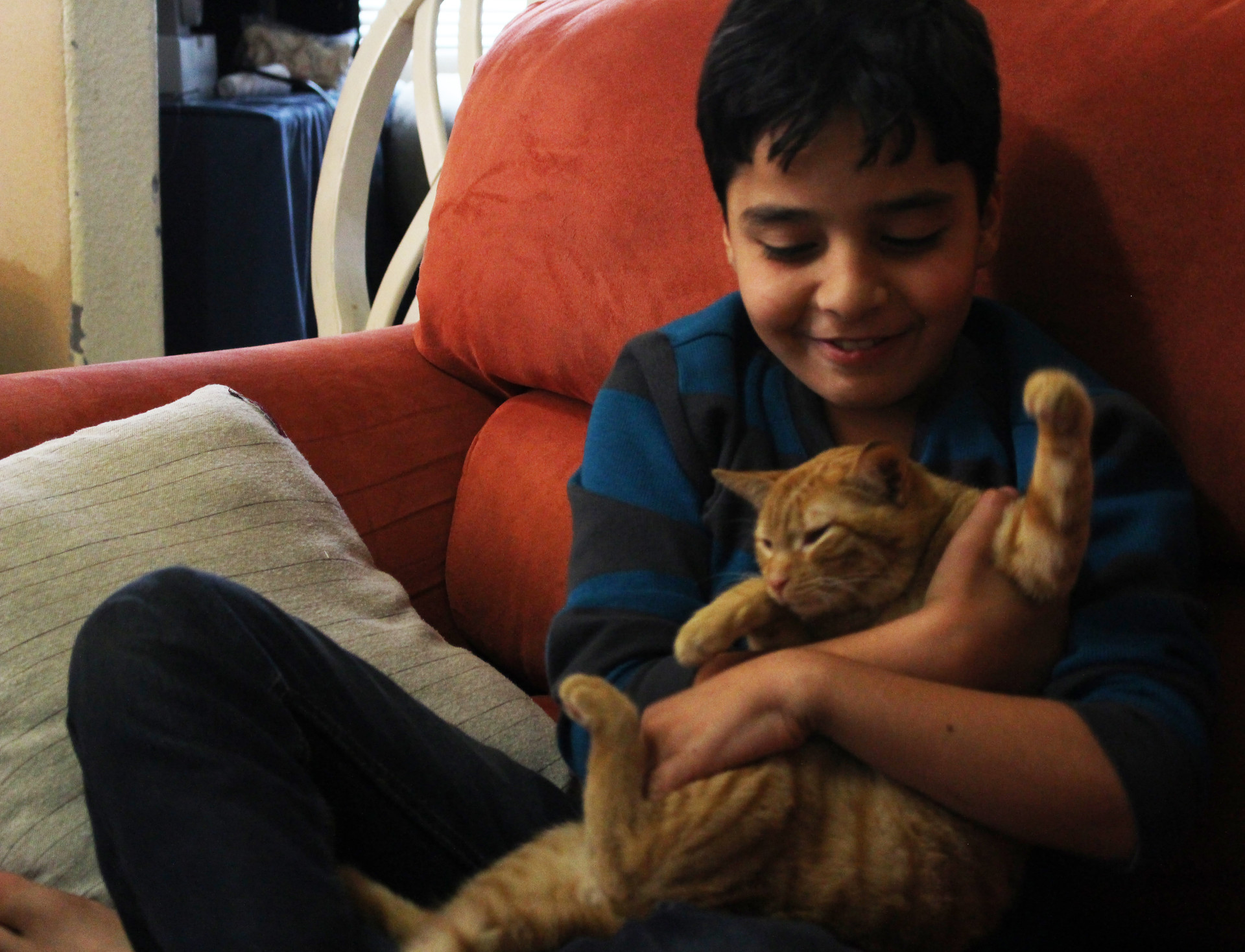 Mohammed Rawoas, 10, plays in his family's Oakland apartment with a cat he adopted and called Simbad.