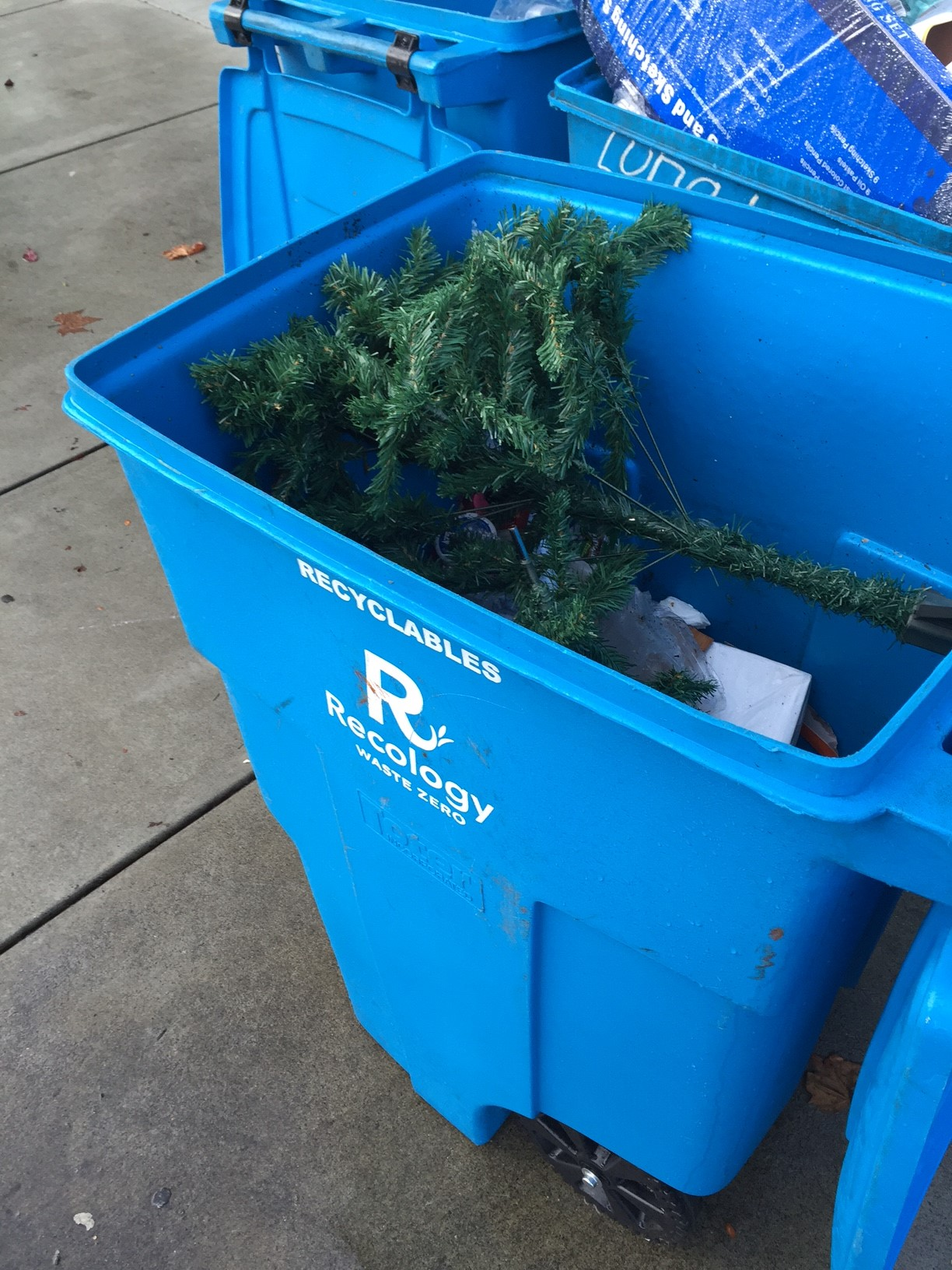 Where to Recycle or Compost Your Christmas Tree in the Bay Area ...