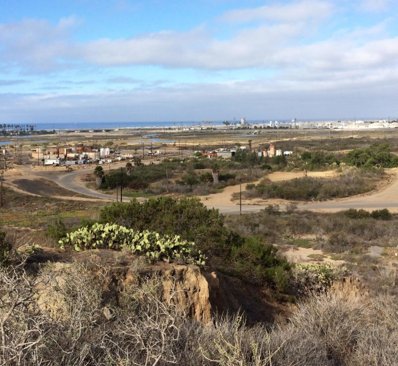 """Despite Banning Ranch's history of oil development, Coastal Commission director Charles Lester says it's """"incredibly rich in biological resources."""""""