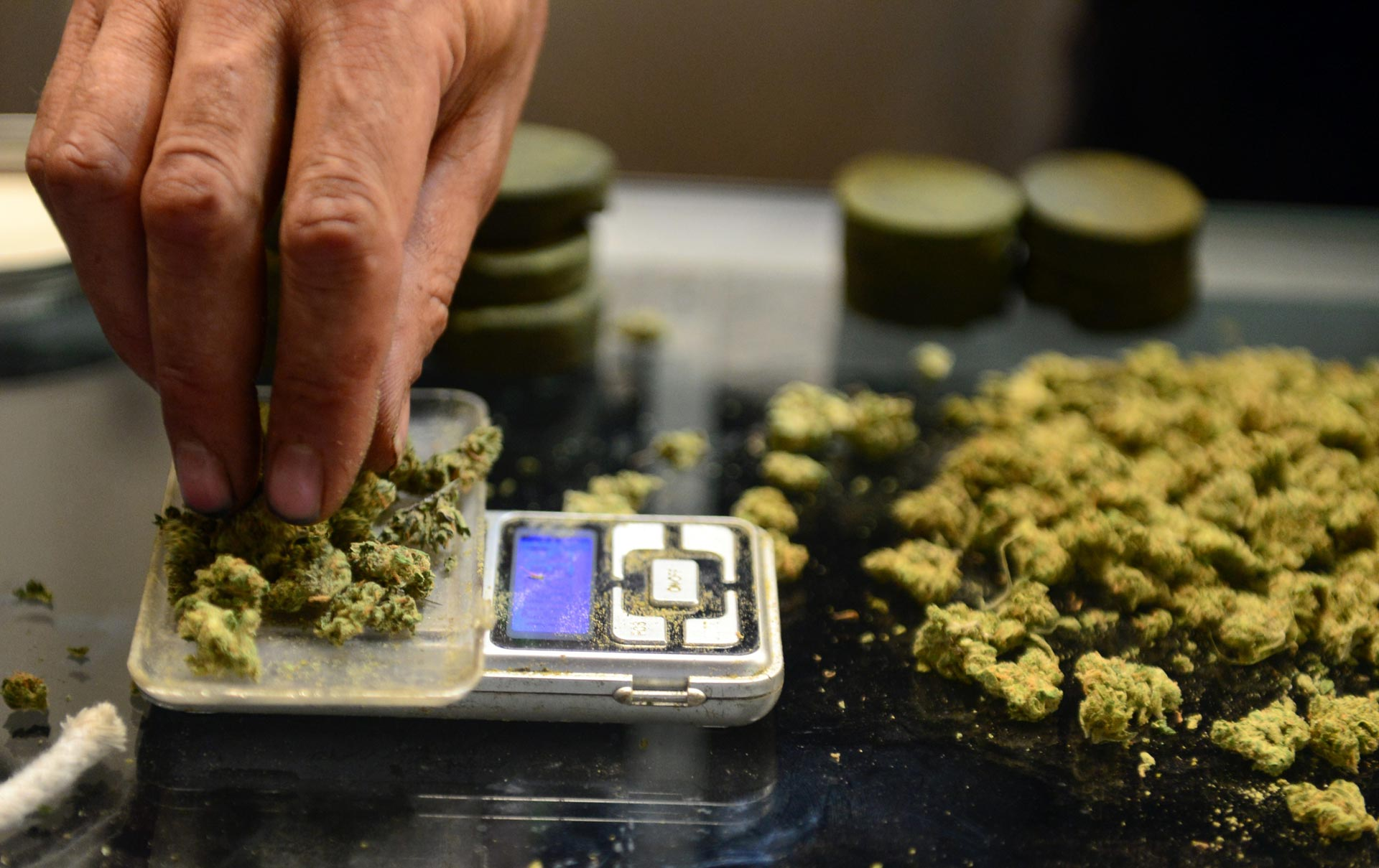 A vendor weighs buds for medical marijuana patients at Los Angeles' first-ever cannabis farmer's market on July 4, 2014.