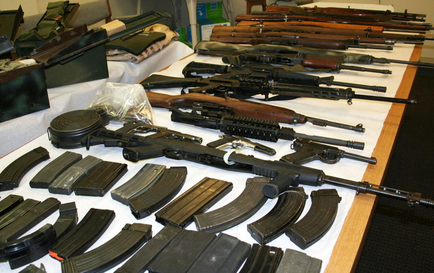State Senate to Review Backlog of Over 10,000 Firearm Confiscation Cases