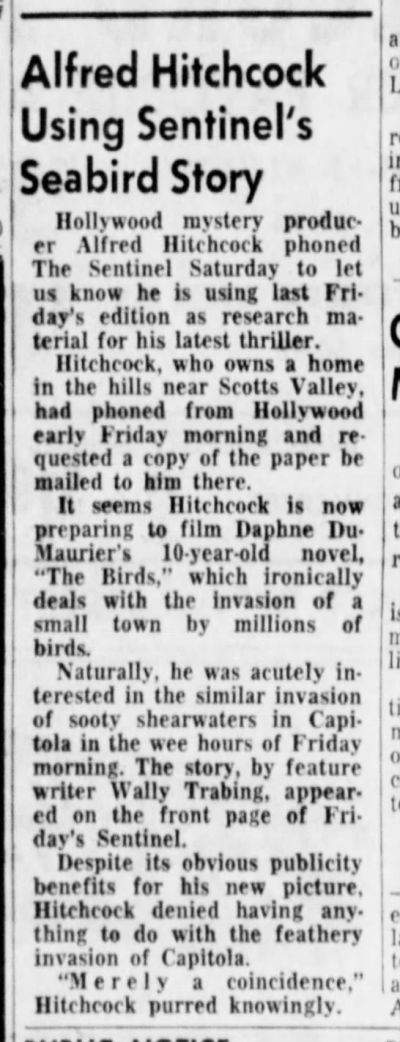 Item from the Aug. 21, 1961, edition of the Santa Cruz Sentinel reporting Alfred Hitchcock's interest in the local bird 'invasion.'