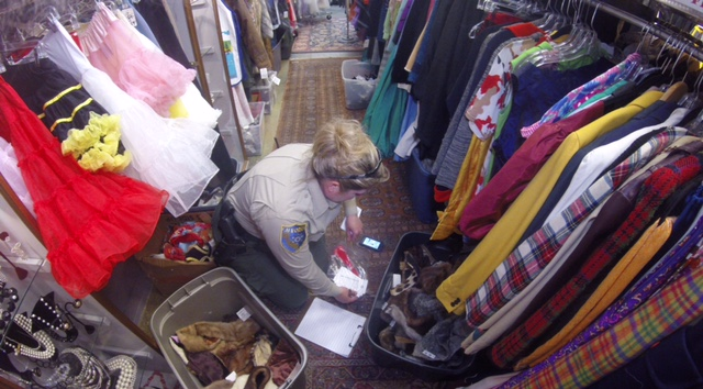 California Department of Fish and Wildlife game warden Jessica Jacobson searches vintage clothing shop Decades of Fashion in San Francisco's Haight-Ashbury neighborhood on Feb. 25. State and federal wildlife officers executed a search warrant seeking garments made from endangered species, which are illegal to sell.