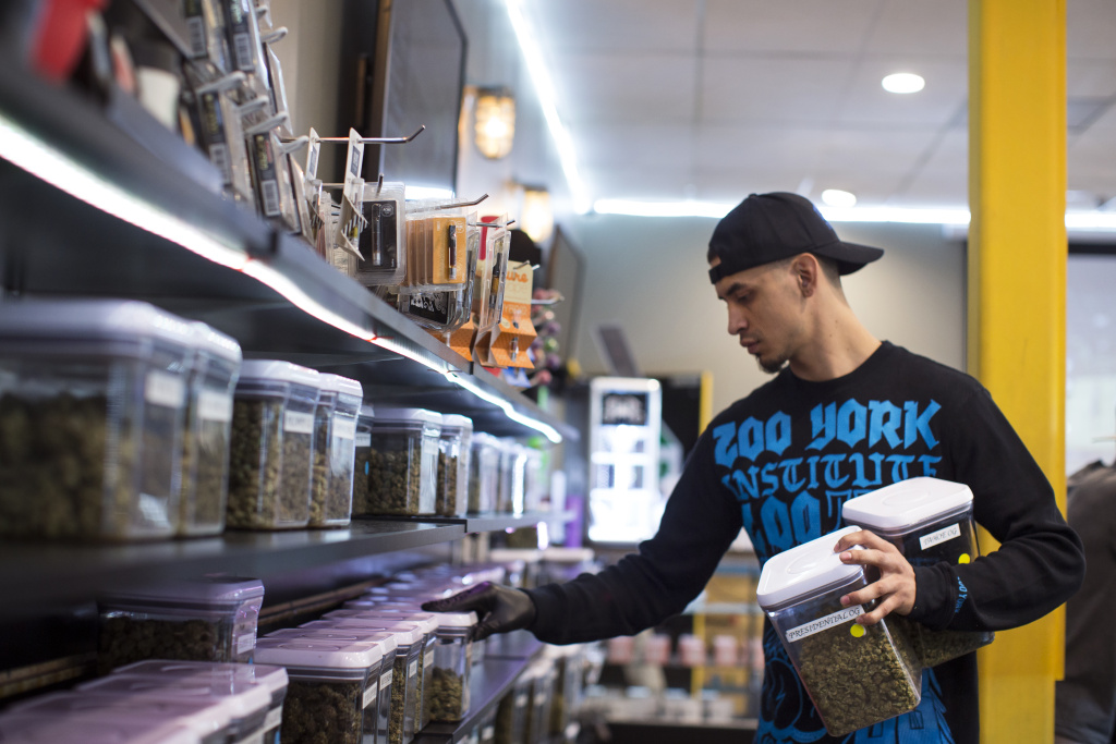 Budtender Andrew Urbina pulls strains from a shelf for a patient at Kushmart, one of the largest medical marijuana dispensaries in downtown Los Angeles, on Monday, Feb. 29, 2016.