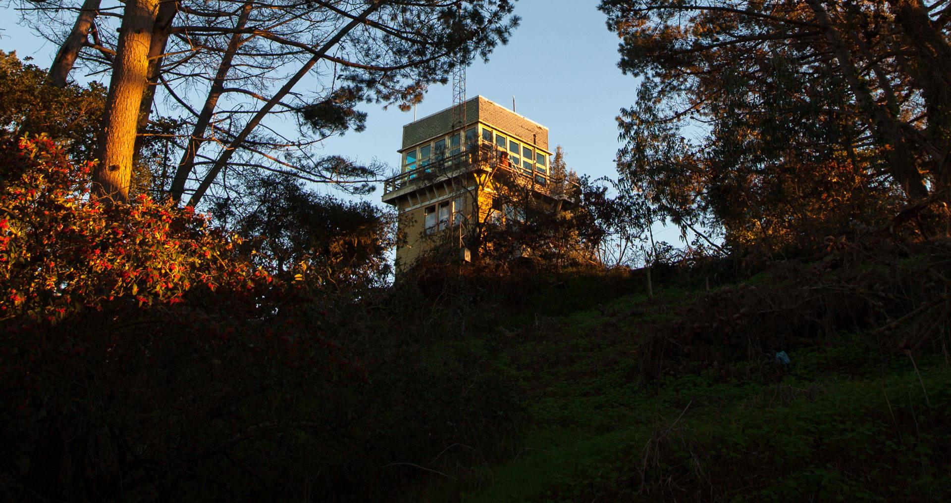 After the Loma Prieta earthquake struck in 1989, the radio tower was sealed shut -- until Eugene Ashton-Gonzalez found a way to sneak inside.  Courtesy Mona Caron