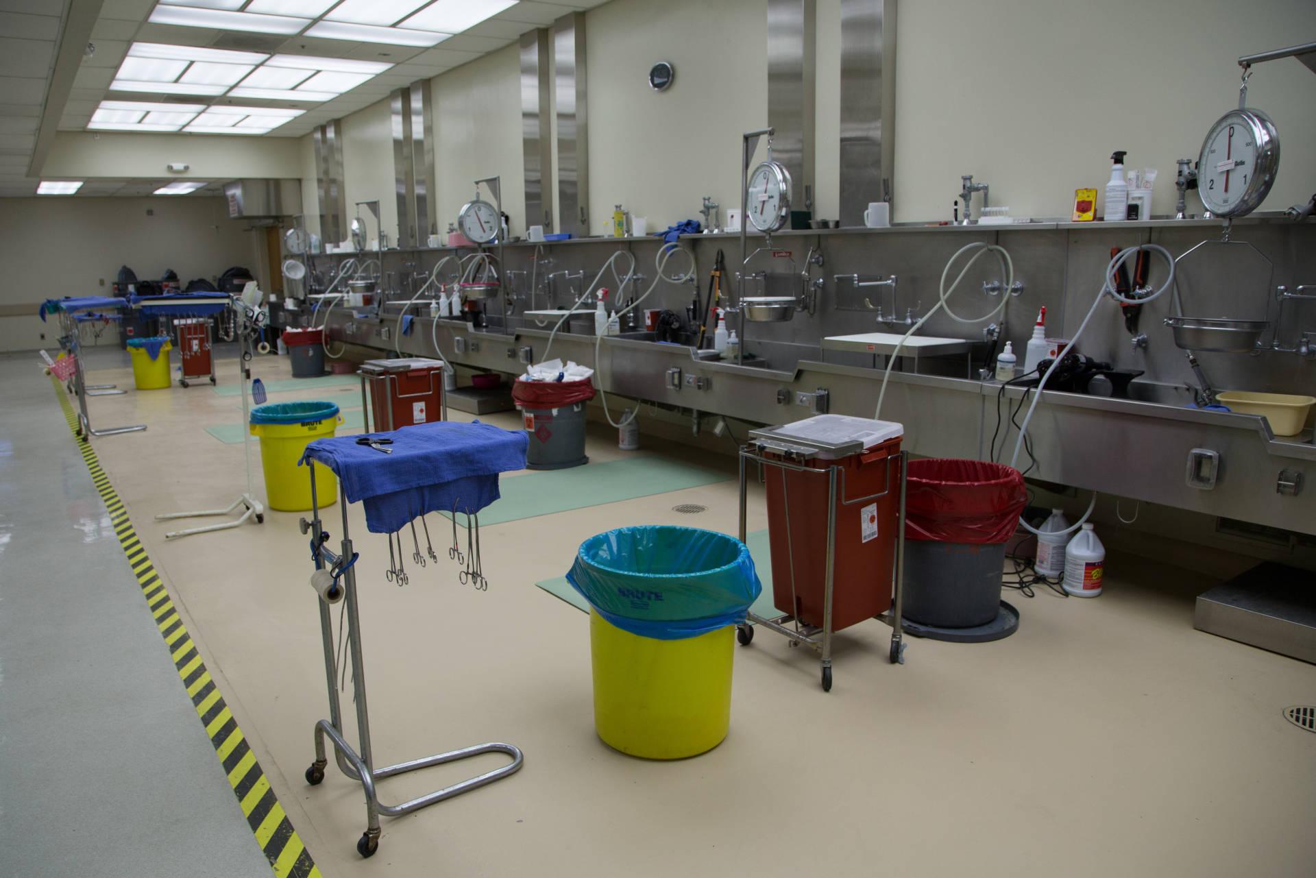 The Santa Clara County Morgue at the medical examiner's office. Lisa Pickoff-White/KQED