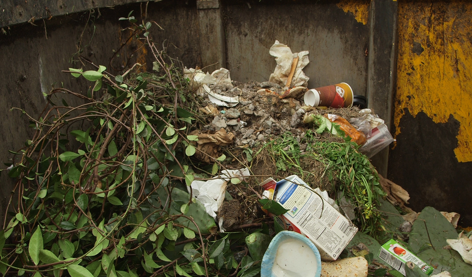 Green waste includes branches, paper, food scraps and every other product that has been alive in your lifetime.