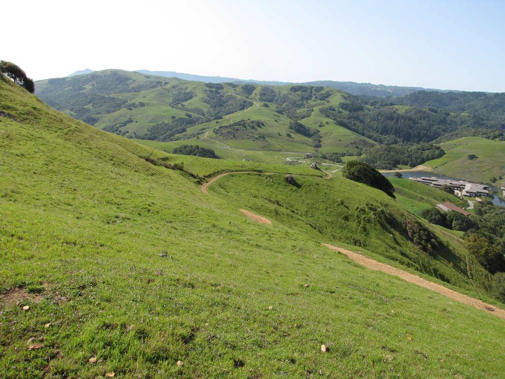 A hiking trail at Marin County's Loma Alta Open Space Preserve.