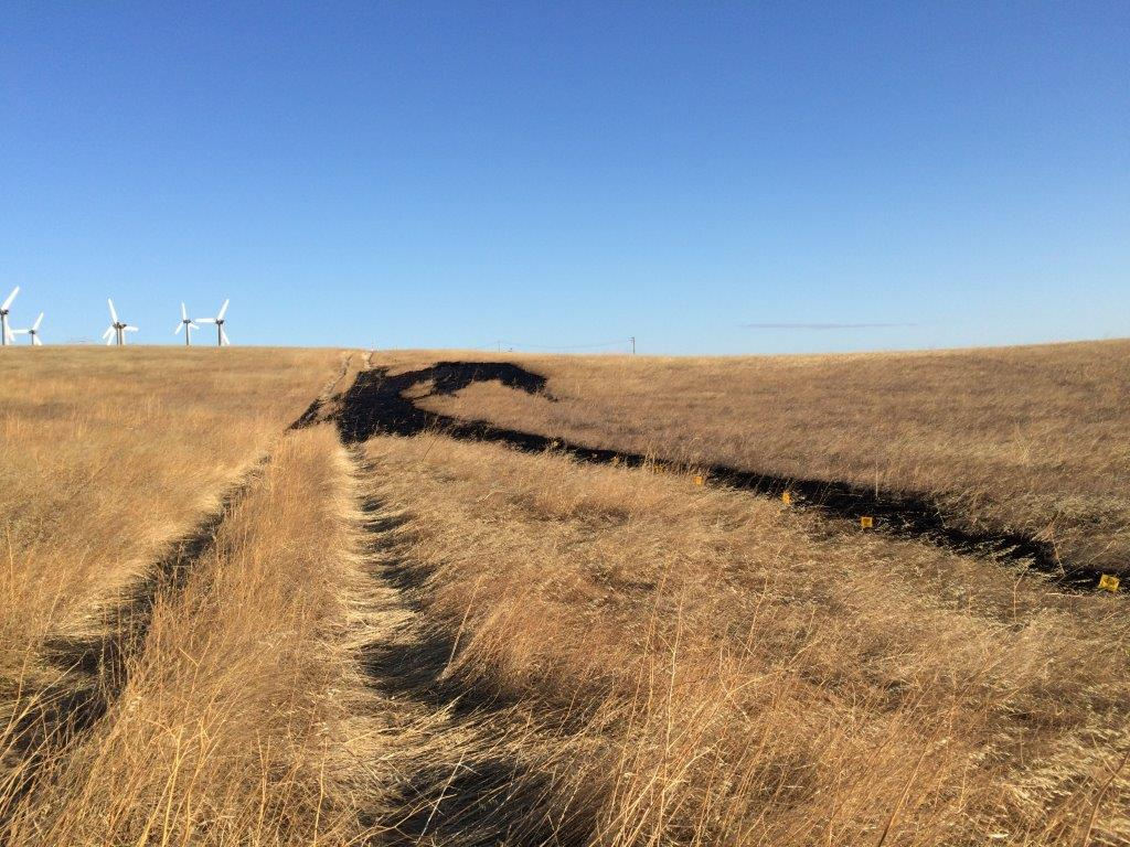 Critics Question State Pipeline Oversight After 2 Altamont Oil Spills