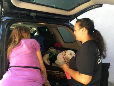Sabrina Delgado - a homeless outreach team leader is helping a woman living out of her car in Redwood City get temporary housing in San Jose.