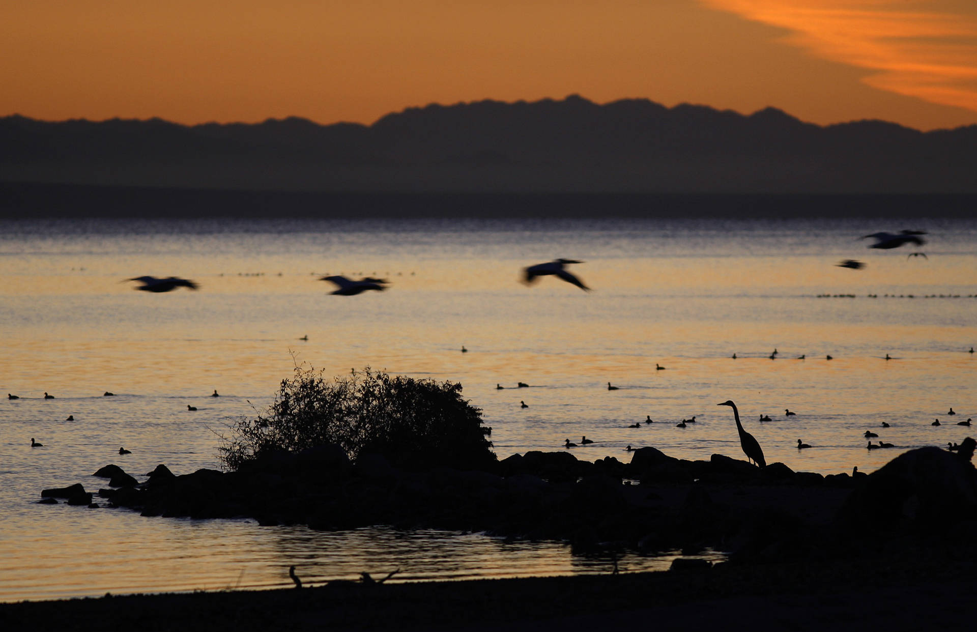California Lawmakers Propose $3 Billion Bond Measure for State, Local Parks