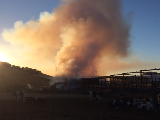 A hay fire at Moreda Valley Dairy west of Petaluma burns at dawn on July 20, 2016.