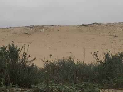 Remains of Cecil B. DeMille's legendary lost city are scattered across the Guadalupe-Nipomo dunes. Credit: Diane Bock