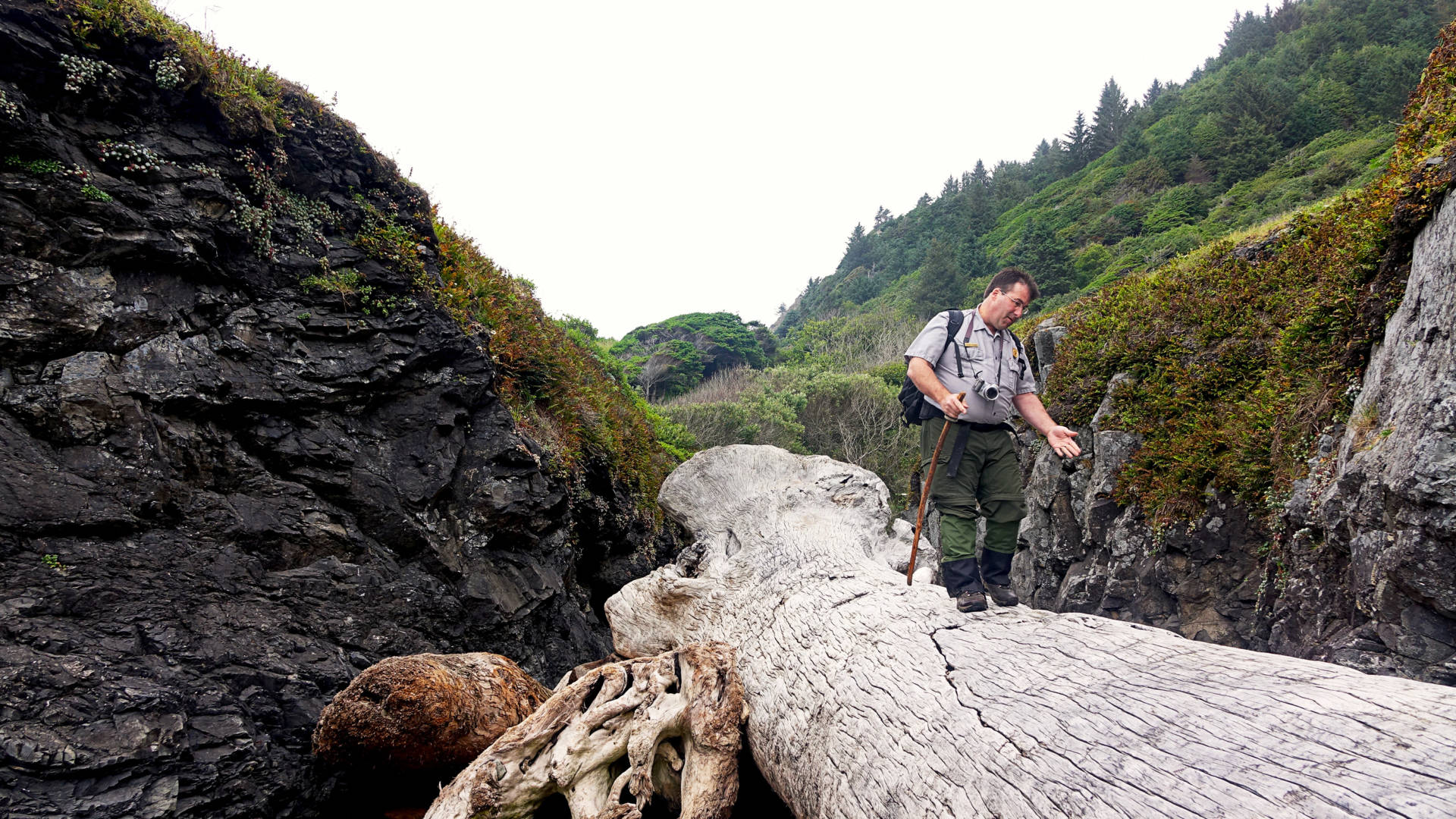 Michael Peterson, an archaeologist at Redwood National Park in California, photographs the coastline annually to monitor erosion of archaeological sites. Jes Burns/OPB/EarthFix