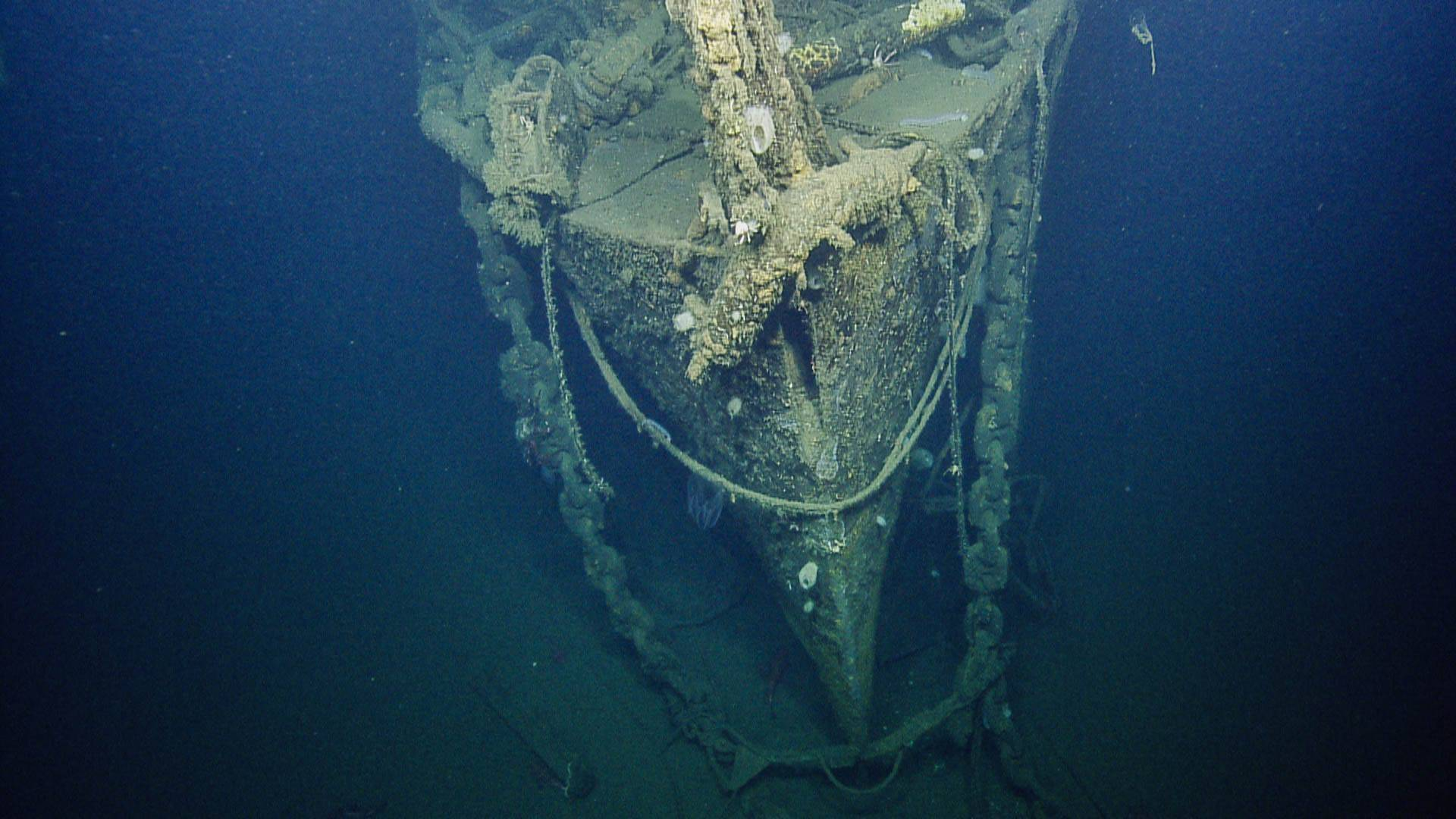 Bow of the USS Independence, seen after 65 years underwater.