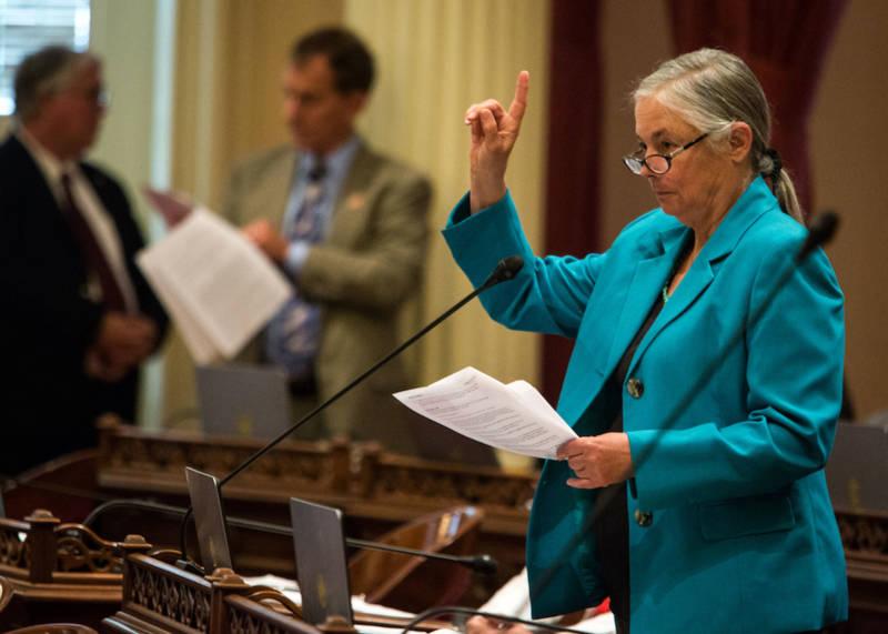 California State Sen. Fran Pavley.