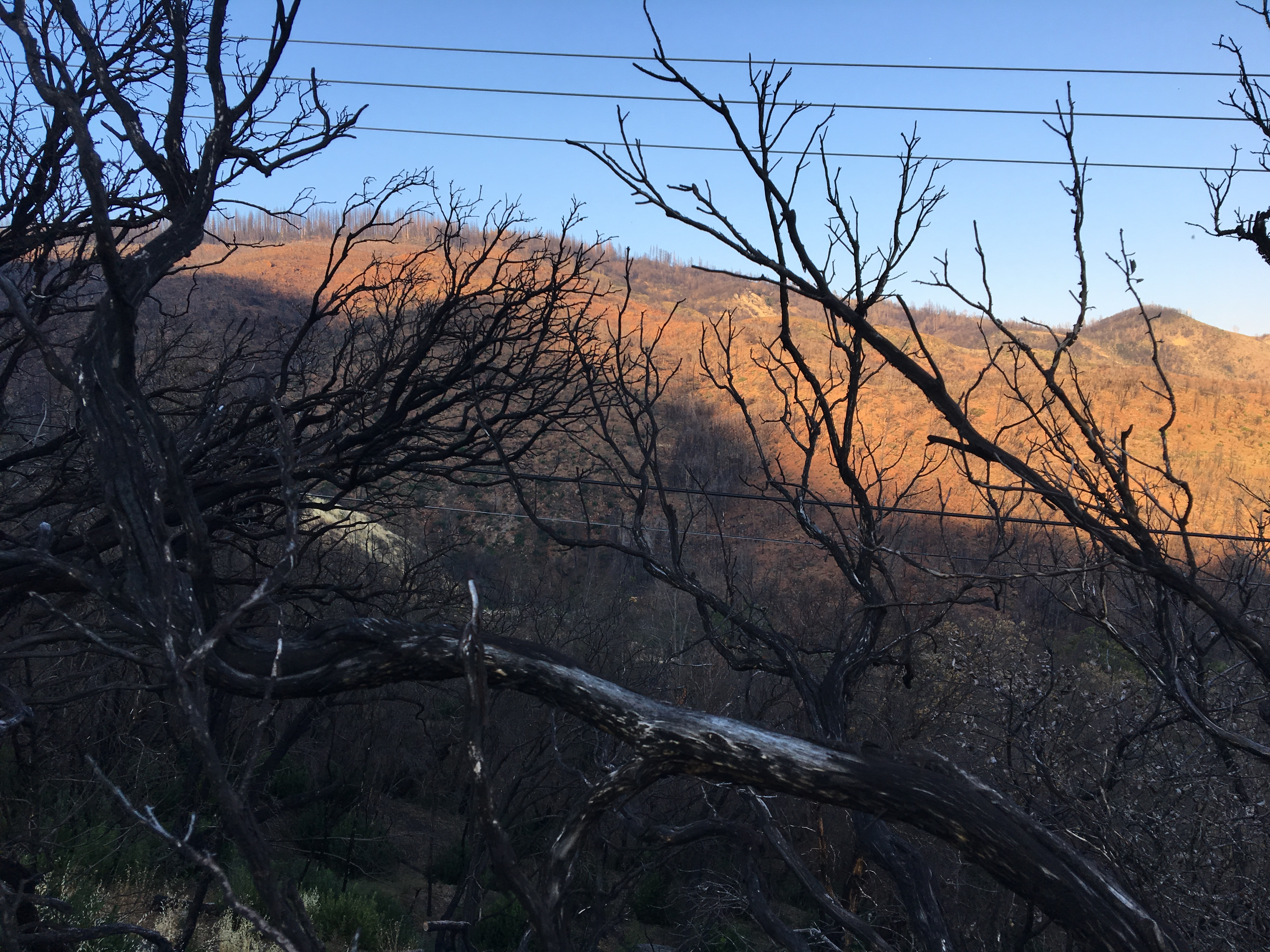 Burn scars still mar the side of Cobb Mountain a year after the Valley Fire burned 76,000 acres and destroyed more than 1,200 homes.