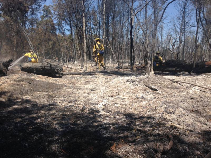 Firefighters battling the Clayton Fire in Lower Lake. The blaze destroyed 300 structures in August, 2016.