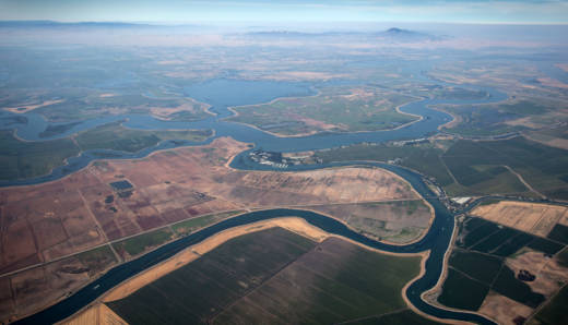 The depleted Sacramento-San Joaquin Delta is suffering from water diversion to farms and cities.