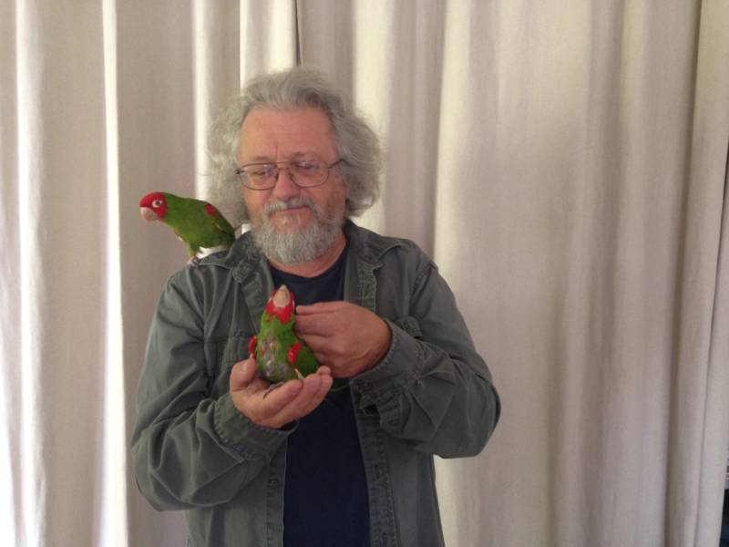 Mark Bittner with two rescued conures.