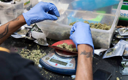 Cannabis buds are weighed out before being packaged at a medical marijuana dispensary in San Francisco.