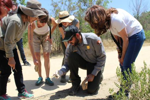 Justin Brown, a National Park Service ecologist who conducts coyote field research, shows volunteers how to identify coyote scat in Rio de Los Angeles State Park.