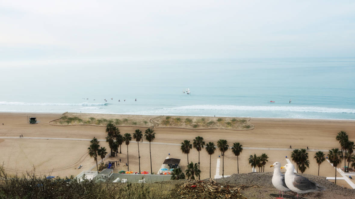 Santa Monica's Beach Is Getting a Climate Change Makeover
