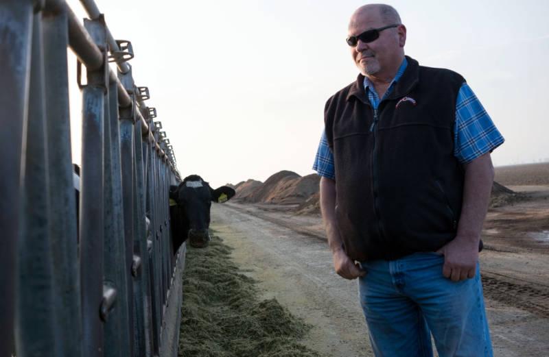 Dairy farmer Tom Barcellos.