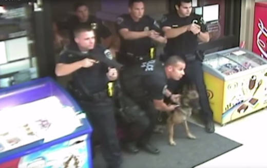 A graphic video released on Wednesday shows numerous Fontana police officers and a police dog cornering and killing a mentally ill and legally blind man in the back of a Fontana, Calif. convenience store on Nov. 22, 2015.