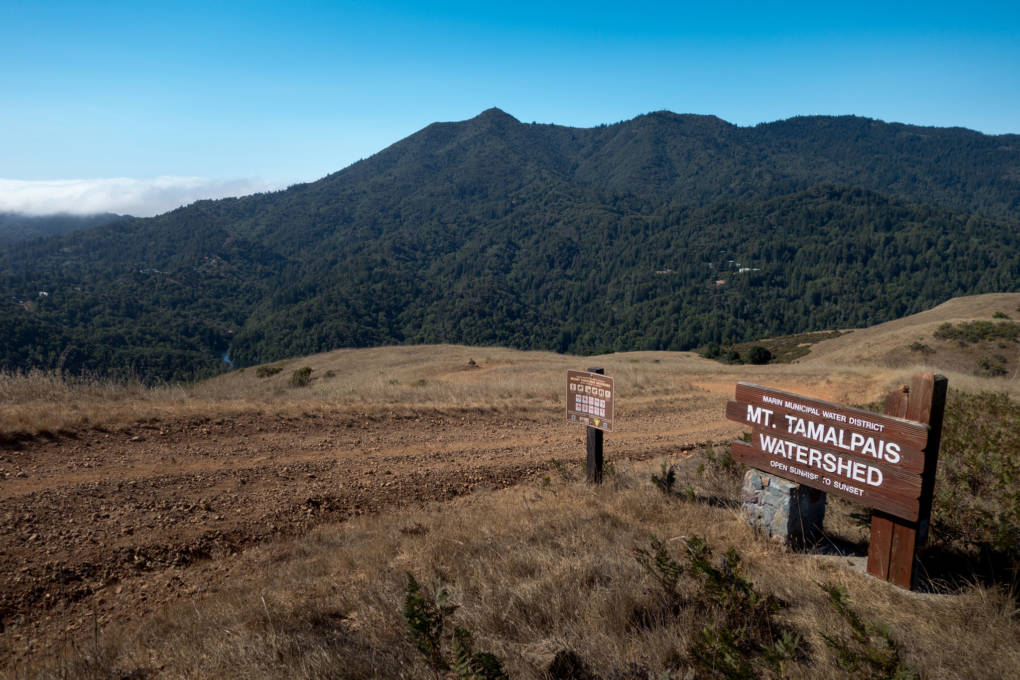 The Mt. Tamalpais Watershed